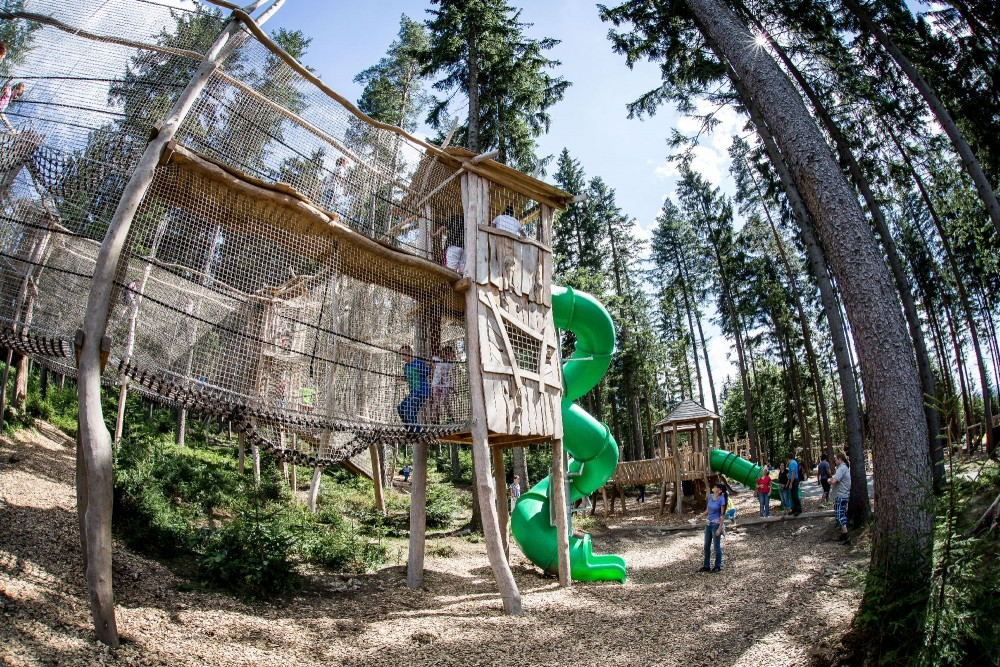 Království lesa (zdroj: www.kralovstvilesa.cz)